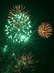 fireworks (4)