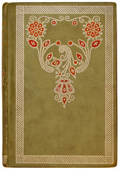vintage french book cover 1878