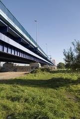 rheinbrücke über wiese