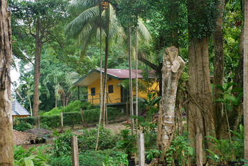 traditional jamaican home