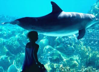 la favola del bambino e del delfino