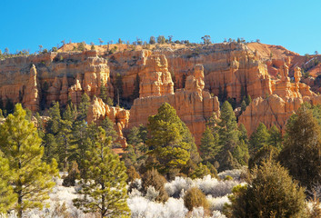 sandstone formations in red canyon