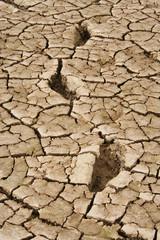 à grands pas vers la sécheresse