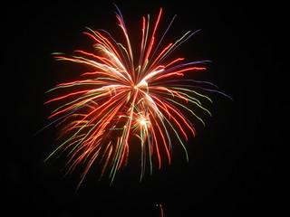fireworks flower 2