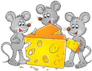 grey mice and delicious cheese