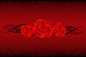 red swirl roses