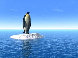penguine_l