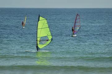 windsurfs
