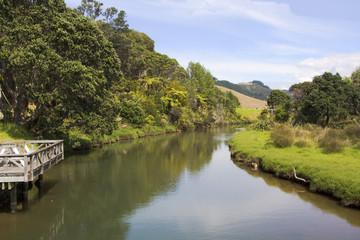peaceful stream in new zealand