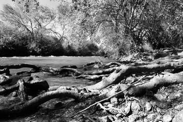 the river jordan.
