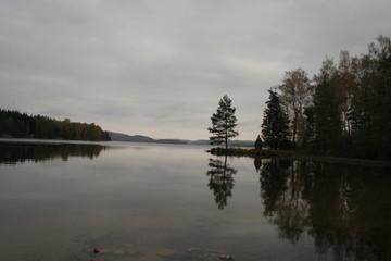 laxsjön