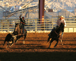 roping to win