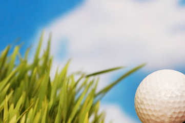 golf ball and green grass against the blue sky