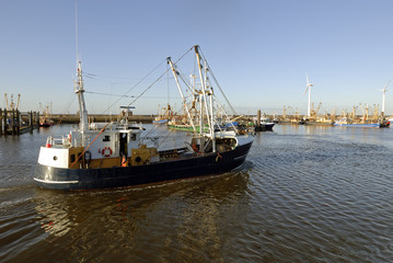 trawler returns to harbour