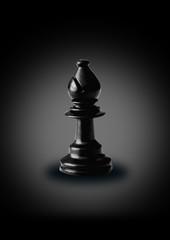 bishop, chess