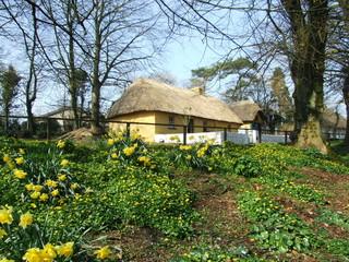 beautiful irish cottage