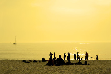 people in the beach