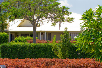 landscaping and hedging