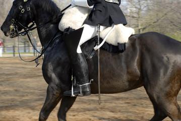 horse guard #3