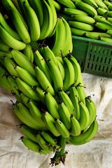 bananos platanos 3