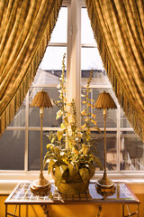 window with curtain and plant in home.