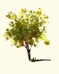 a fun watercolor  of a little sunshine tree