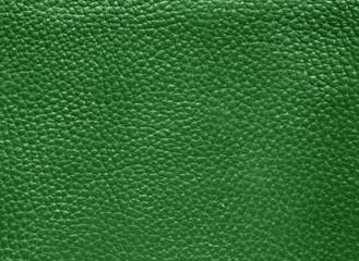 Photo sur Plexiglas Cuir leder grün