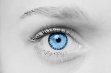 blue eye on gray