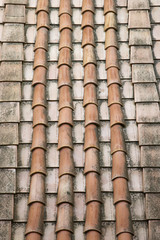 Rooftop shingles.