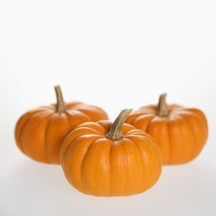 three pumpkins on white.