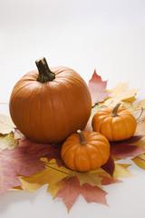 three pumpkins on white.