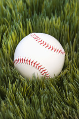 baseball resting in grass.