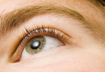 amazing eye closeup