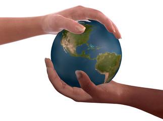 fratellanza globale