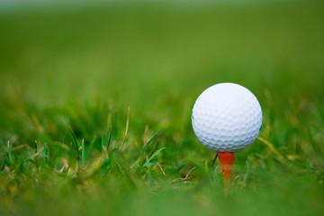 white ball of golf