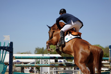 showjumper and horse
