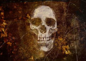 grunge gothic skull