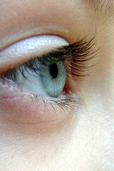oeil de profil