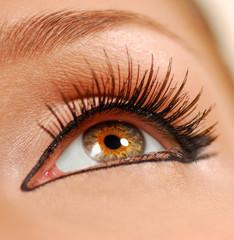 beauty close eye.