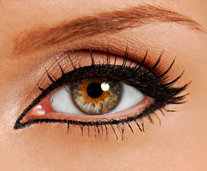 woman close-up eye. false lashes. liner.