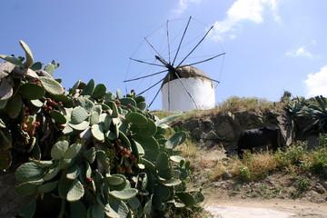 tourisme/grèce/cyclades/moulin
