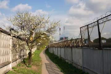 moscow urban landscape