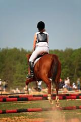 equitation suat