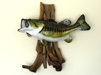 large mouth bass mounted