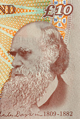 charles darwin, father of evolution