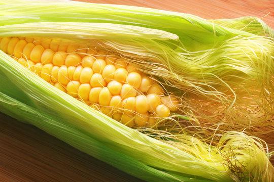 golden corn on the cob