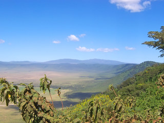 ngorongoro crater, serengeti park, tanzania Wall mural