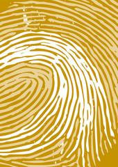 fingerprint backgrounds
