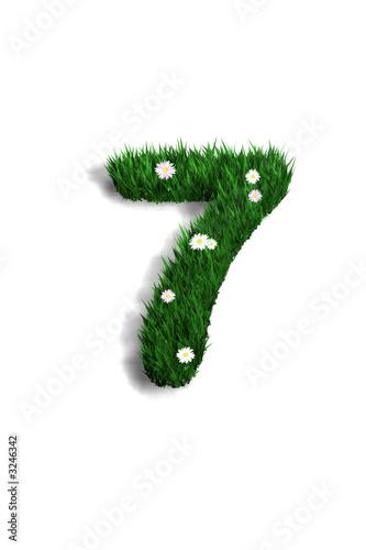 Chiffre 7 pelouse fleurie photo libre de droits sur la for Pelouse tarif