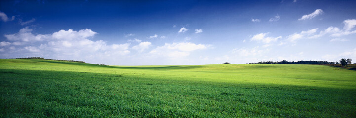 Fotobehang Weide, Moeras russia summer landscape - green fileds, the blue sky and white c